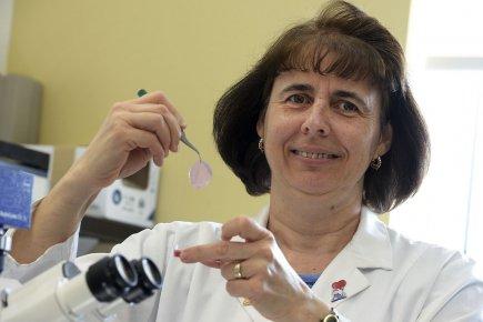 La scientifique Lucie Germain a consacré les 15... (Photo Patrice Laroche, Le Soleil)