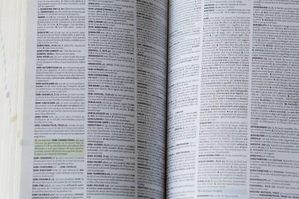 Plusieurs nouveaux mots se sont ajoutés dans les... (Archives, La Presse)