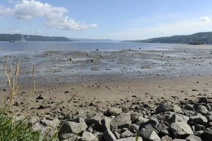 CHRONIQUE / C'est en été que l'on fréquente le plus le bord des lacs et des... (Archives Le Quotidien, Jeannot Lévesque)
