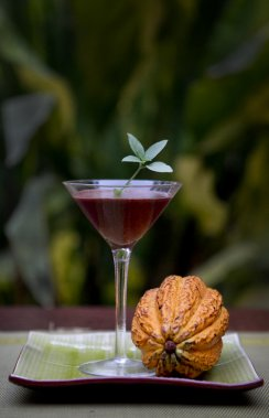 Visite de la plantation de Geneviève Grandbois dans la région d'Ojochal au Costa Rica. Plusieurs recettes sont concoctées avec les produits de la chocolatière québécoise par Marcella, la chef propriétaire du restaurant Le Citrus. (Marco Campanozzi, La Presse)