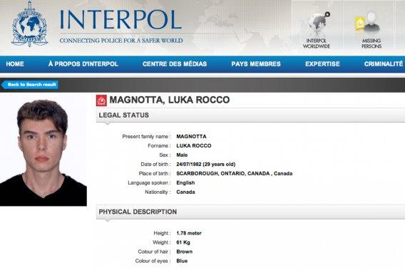 Avis de recherche sur le site d'Interpol. (Image tirée du web)