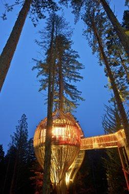 (Photo fournie par Redwoods Treehouse)