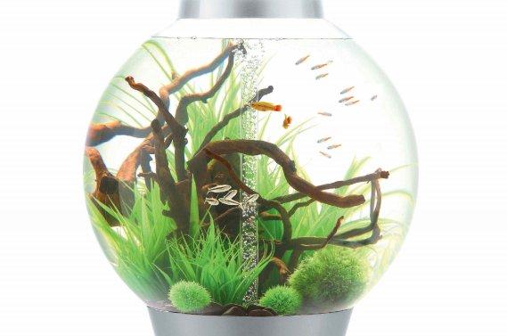 aquarium entretien facile m canisme chasse d 39 eau wc. Black Bedroom Furniture Sets. Home Design Ideas
