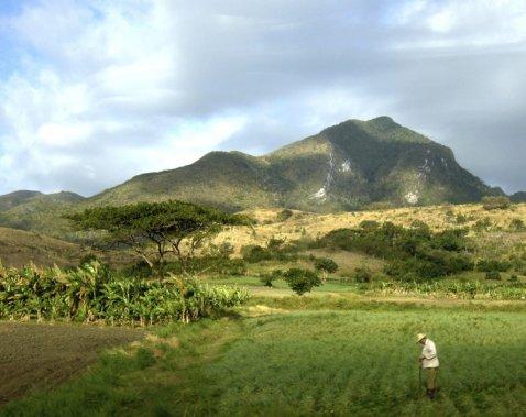 Agriculture au pied du massif de l'Escambray, près de Trinidad. (Photo Simon Chabot, La Presse)