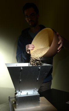 Le brasseur Olivier Bergeron verse son grain dans le concasseur. ()