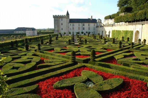 Les plantes médicinales et culinaires se dévoilent dans les Jardins de Villandry. (Photo RelaxNews)