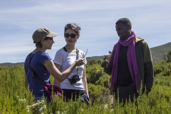 Ayano, le guide du trek, informe les touristes sur la flore luxuriante des Balé. (Photo fournie par Emmanuel Leroux-Nega)