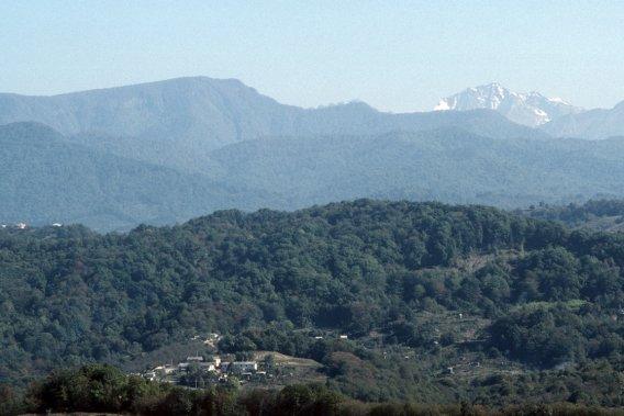 Il faut croire que dans les montagnes avoisinantes, à un peu plus de 50 km de la ville, la neige sera suffisante pour accueillir les Jeux olympiques. (PHOTO BERNARD BRAULT, LA PRESSE)