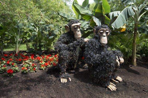 Plusieurs sculptures animales sont dotées d'yeux en résine de synthèse qui leur donnent une vitalité étonnante. (Photo Robert Skinner, La Presse)