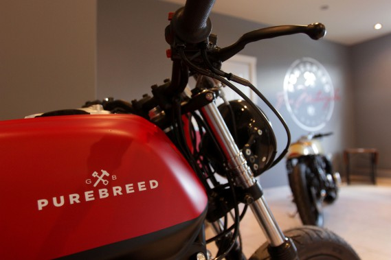 Pour son fondateur, Guillaume Brochu, les motos Purebreed apportent un vent de fraîcheur au milieu de la moto, qui en a bien besoin.