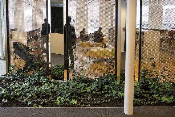 Bibliothèque Marc-Favreau (Photo Robert Skinner, La Presse)