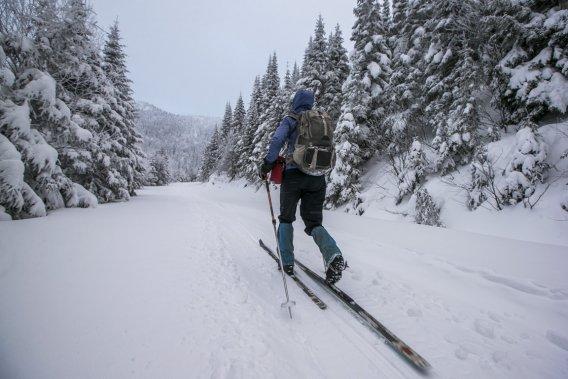 Dès qu'on grimpe un peu, les conifères du parc se couvrent d'un épais manteau de neige. (Photo Hugo-Sébastien Aubert, La Presse)