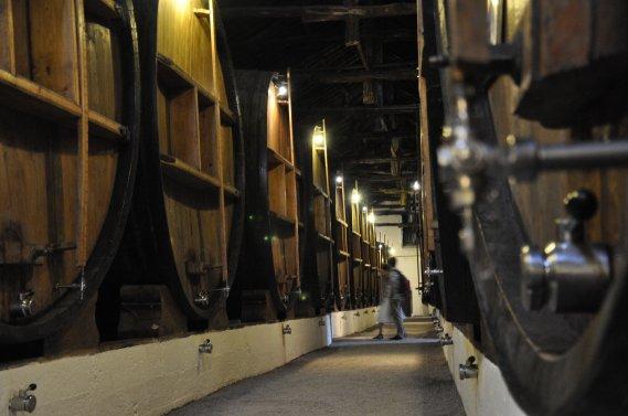 Les caves de la maison Taylor Fladgate&Yeatman sentent bon le porto qui y vieillit. (Photo Stéphanie Morin, La Presse)