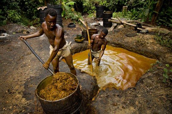Les fils dun agriculteur local du comté de Grand Bassa opposé aux projets de développement de la firme Equatorial Palm Oil (EPO) s'affairent produire de l'huile de palme de manire artisanale, un labeur puisant et lent. (Photo David Boily, La Presse)