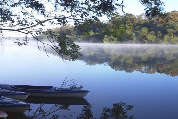 Un petit matin tranquille dans le delta des rivières Tensaw et Mobile, au sud de l'Alabama. (PHOTO FOURNIE PAR 5 RIVERS DELTA RESOURCE CENTER)
