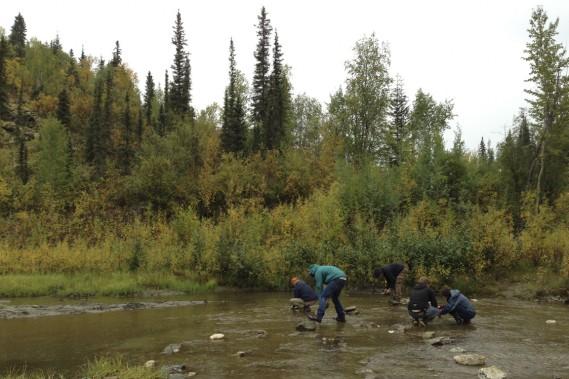 On peut encore jouer les chercheurs d'or dans les environs de Dawson City. (Photo Marie-Julie Gagnon, collaboration spéciale)