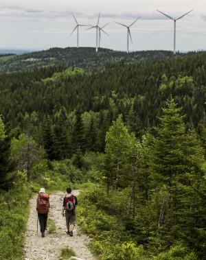 Les éoliennes permettent de financer une partie des activités du parc, et donc d'offrir des sentiers aux randonneurs. (Photo Olivier Pontbriand, La Presse)
