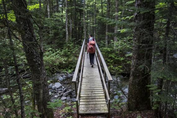 Près du départ, le sentier enjambe le ruisseau Beaudoin. (Photo Olivier Pontbriand, La Presse)