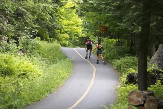 La piste cyclable de 19 km qui ceinture le parc de la Yamaska est une belle manière de le découvrir. (Photo François Roy, La Presse)