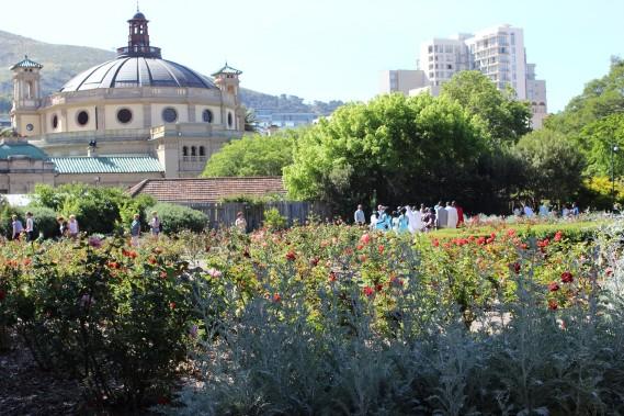 Promenade au Company's Garden. (Photo Sylvie St-Jacques, La Presse)