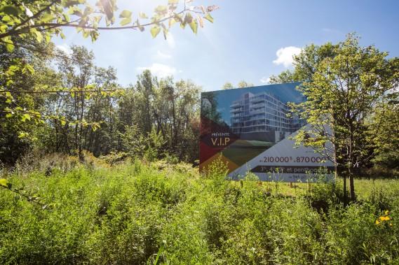 Le M Lorraine sera construit sur une parcelle de terrain qui était autrefois habitée. L'immeuble sera abondamment vitré pour profiter des vues sur la nature. (PHOTO: OLIVIER PONTBRIAND, LA PRESSE)