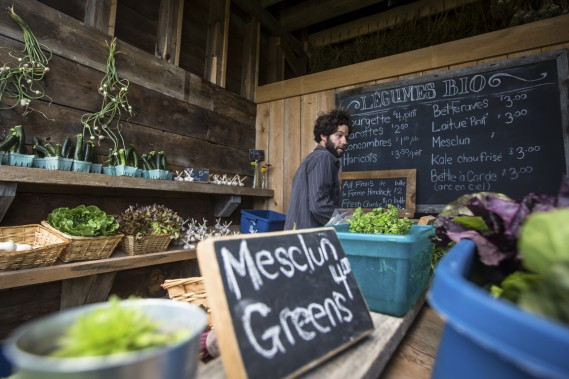 Un étalage de légumes frais et biologiques. (Photo Olivier Pontbriand, La Presse)