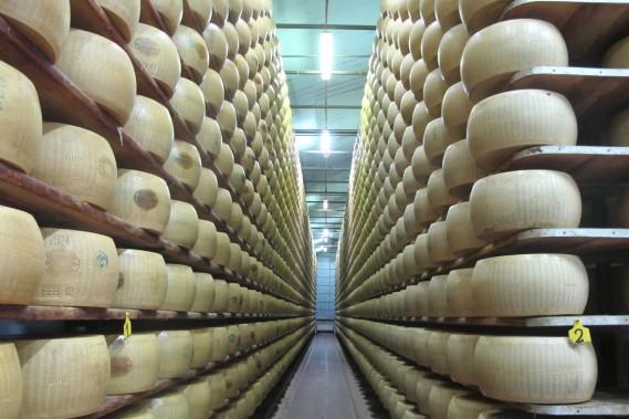 Meules de parmesan en vieillissement chez Hombre, producteur biologique installé tout près de Modène. (Photo Marie-Claude Lortie, La Presse)