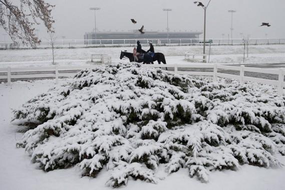 Balade à cheval dans un parc de Toronto. (La Presse Canadienne)