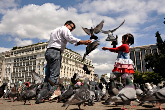 À Athènes, la place Syntagma grouille de pigeons. (Photo Bernard Brault, archives La Presse)