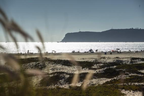 La région de San Diego compte de nombreuses plages de sable blanc, dont celle de Coronado. (Photo Martin Leblanc, La Presse)