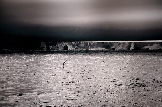 L'exposition D'un pôle à l'autre- La poésie des glaces (Le Soleil, Erick Labbé)