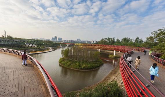 Le parc Yanweizhou, en Chine, a enlevé le titre de Paysage de l'année, à l'occasion du World Architecture Festival de Singapour. Situé à l'embouchure de trois rivières, ce projet est constitué d'une digue en terrasse à l'abri des inondations, recouverte de plantes indigènes. Le jury estime que des stratégies «révolutionnaires» ont mené à la conception de ce parc. (Fournie par Turenscape International)