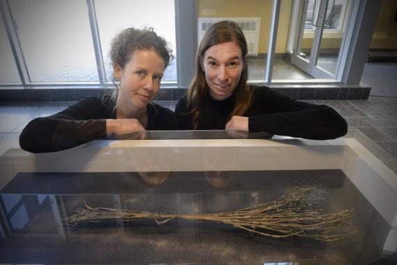 Fiona Annis et Véronique La Perrière M. ont reçu une bourse d'acquisition de 3000 $ des Musées de la civilisation pour cette oeuvre intitulée <em>Survivance (semence et poussière)</em> qu'elles ont présentée à la Biennale internationale du lin de Portneuf, cette année. (Le Soleil, Jean-Marie Villeneuve)