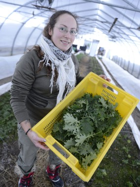 Amira Fortin pose ici avec le produit de la cinquième récolte de légumes d'hiver, du chou kale ici, de la coopérative de solidarité Les Artisans paysans. (Photo Le Progrès-Dimanche, Jeannot Lévesque)