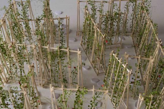 <i>La maison de Jacques</i> de Romy Brousseau, Rosemarie Faille-Faubert et Émilie Gagné-Loranger, de Québec. La maison se dresse comme un bosquet vert géant parsemé de fleurettes écarlates. À l'intérieur, on se glisse entre les rangs de haricots dont les vrilles s'entortillent autour de structures en bois effilées. Les murs découpent l'espace en une enfilade de petits jardins intimes. L'un de ces cocons demeure secret, inaccessible. ()