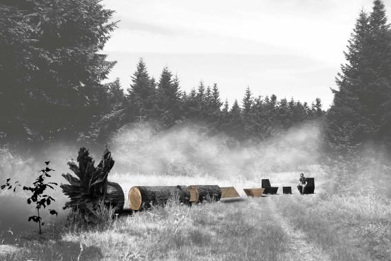 <i>Carbone </i>de Maxime Coache, Victor Lacaille et Luc Dallanora, de Nantes (France). L'installation évoque le cycle de production mis en parallèle avec le cycle du carbone. Un tronc d'arbre sculpté et débité partiellement met en évidence l'origine du matériau employé pour la confection du mobilier. Une souche façonnée en partie, cinq modules en bois massif et un jeune plan complètent ce singulier tableau-paysage. ()