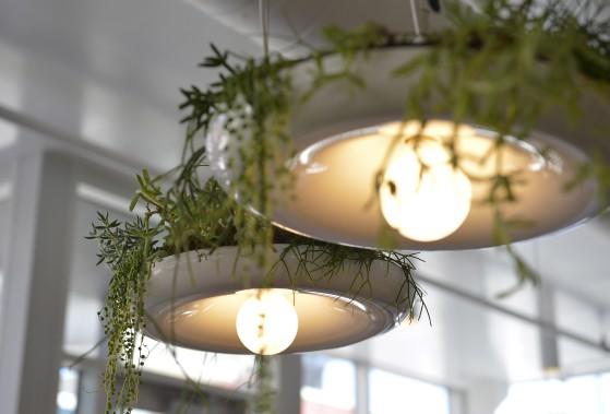 Pour insuffler un peu de verdure à l'espace, quelques luminaires servent de jardins suspendus. (Le Soleil, Yan Doublet)