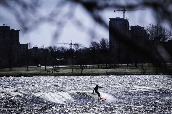 Un surfeur s'aventure au milieu de la rivière des Outaouais. (Patrick Woodbury, LeDroit)