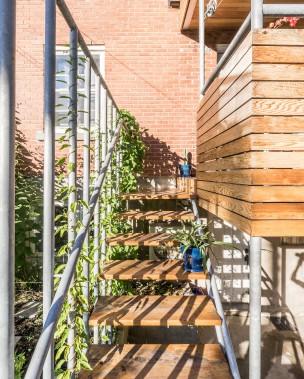 Une grande variété de plantes prospère dans cette cour de Villeray. Parmi celles-ci, il y a des plantes grimpantes qui s'enroulent autour des poteaux de garde-corps ou qui parcourent les clôtures à mailles de chaîne. (PHOTO RAPHAËL THIBODEAU, FOURNIE PAR L. McCOMBER)