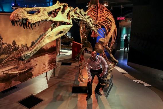 Jordan Mallon se promène sous le squelette d'un <em>Suchomimus</em>. (Patrick Woodbury, LeDroit)