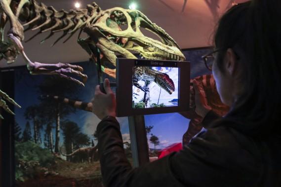 Grâce aux reconstitutions en 3D, on peut scanner un squelette avec une tablette et découvrir à quoi ressemblait la bête en chair. (Patrick Woodbury, LeDroit)