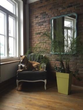 Pour le salon d'une amie, Nora Chhun a rénové un fauteuil et un miroir antiques avec de la peinture de lait, qui est très mate et adhère bien aux meubles. Dylan, lui, joue le parfait mannequin. (Fournie par Dans ta Baraque)