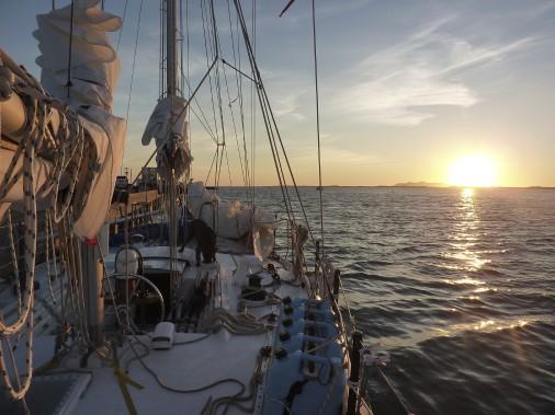 S'ajoute aux neuf matelots la jeune chienne labrador baptisée Brume. (Fournie par Brumeetpinocchio.com)
