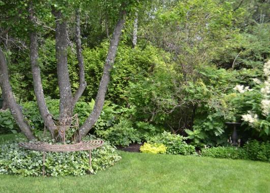 Des bancs de parc en fer forgé permettent de contempler le magnifique jardin et de s'y détendre. (Mélissa Bradette)