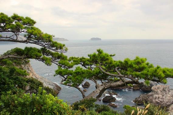 En randonnée dans les forêts de Shikinejima, les points de vue sont à la fois saisissants et typiquement japonais. (Crédit photo: Sarah-Émilie Nault)