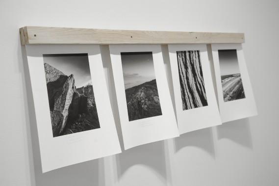 Des paysages rocheux et des herbes occupent une place importante dans le deuxième série de photos. C'est par eux que les artistes font découvrir L'île aux pommes aux visiteurs. (Photo Le Quotidien, Gimmy Desbiens)