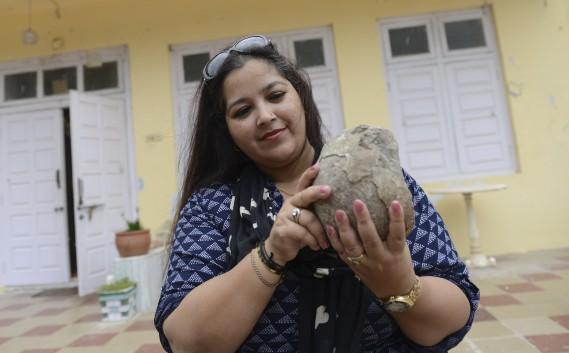 Aalia Sultana Babiconsacre sa vie à protéger les restes des animaux qui peuplaient autrefois Balasinor. Elleprésente le clou de sa collection: un rare oeuf fossilisé de Titanosaurus, découvert entre les mains d'une villageoise qui s'en servait pour moudre les épices. (PHOTO AFP, SAM PANTHAKY)
