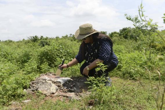 Les touristes de passage ont droit à un tour sur le thème de la paléontologie par la princesse en personne, sur les terres que possédait sa famille.Des poils de son pinceau, elle époussette une zone sur un rocher pour mettre au jour un fossile. (PHOTO AFP, SAM PANTHAKY)