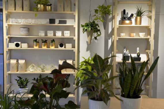La boutique a été conçue pour être «instagrammable». Même les sacs de terre en papier kraft sont design et actuels. (Le Soleil, Pascal Ratthé)