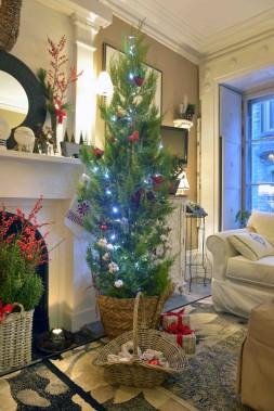 L'arbre de Noël de Marie Baillargeon (Le Soleil, Jean-Marie Villeneuve)